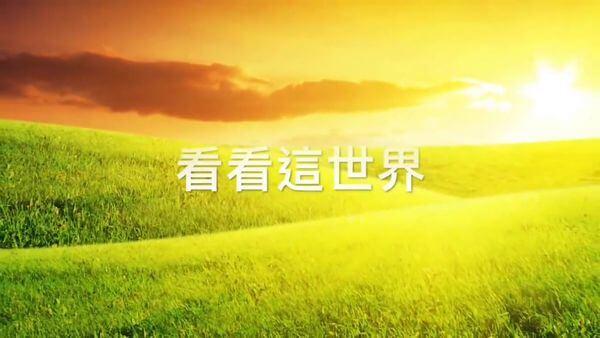 愛冥想 2020/04/08